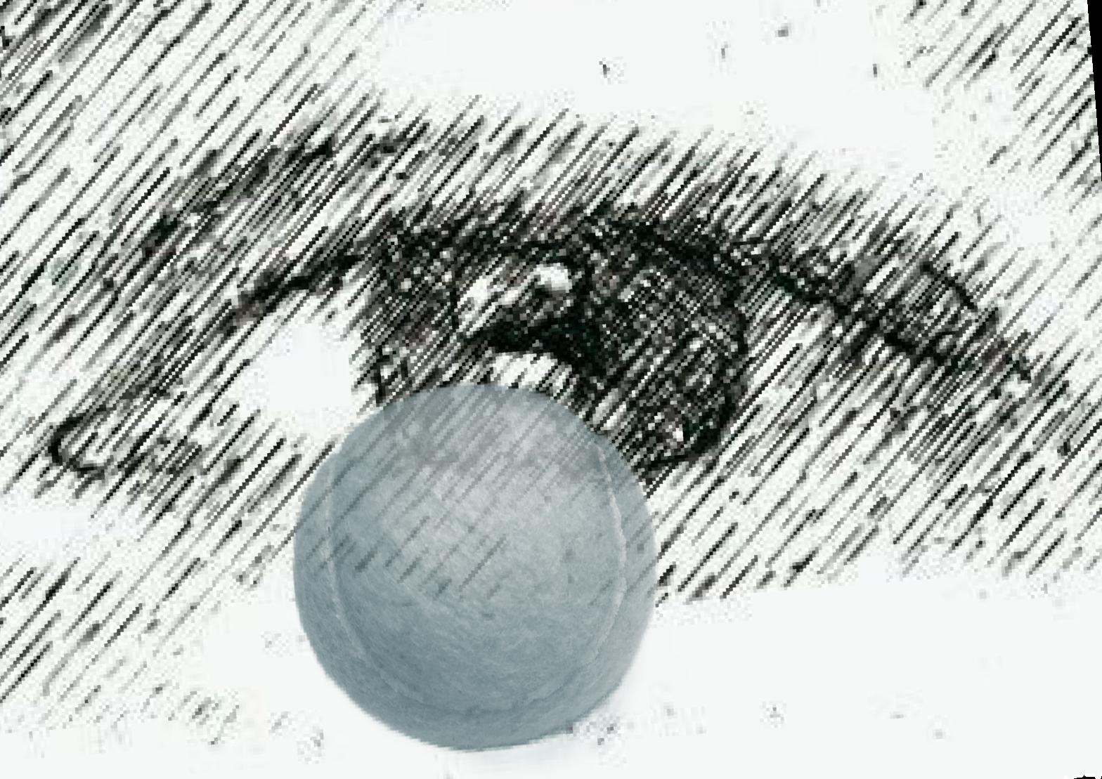 Sporteye logo